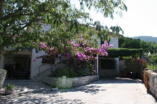 Ferienhaus Maslina in Hvar
