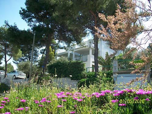 Ferienhaus Tomi in Slatine